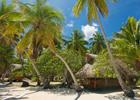 Beach Bungalow Escape