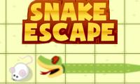 Snake Escape online hra