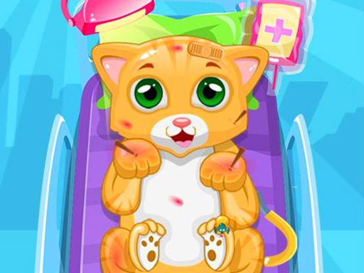 Little Cat Doctor
