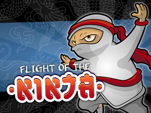 Flight Of The Ninja