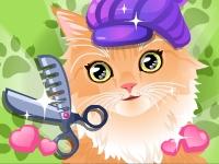 Veterinaria de gatos