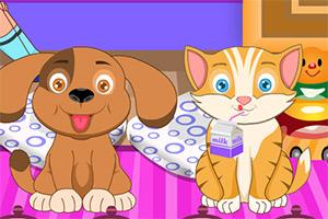 Veterinaria de mascotas
