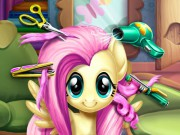 Peinar pony