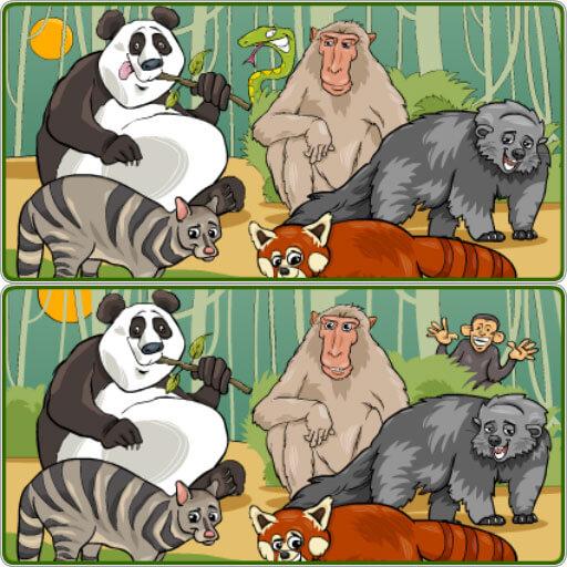 Wildlife Safari Five Diffs