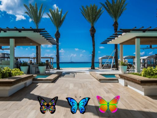 Find 100 Butterflies