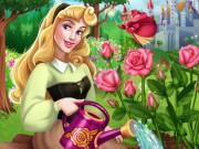 Aurora's Rose Garden