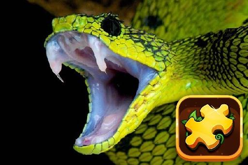 Défi puzzle serpent
