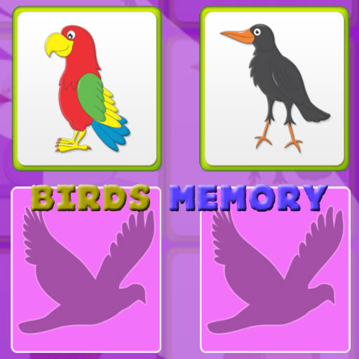 Kids Memory with Birds
