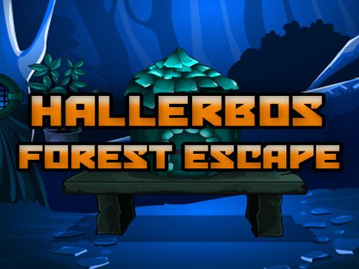 Hallerbos Forest Escape