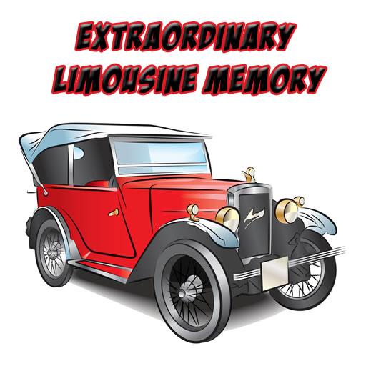 Extraordinary Limousine Memory