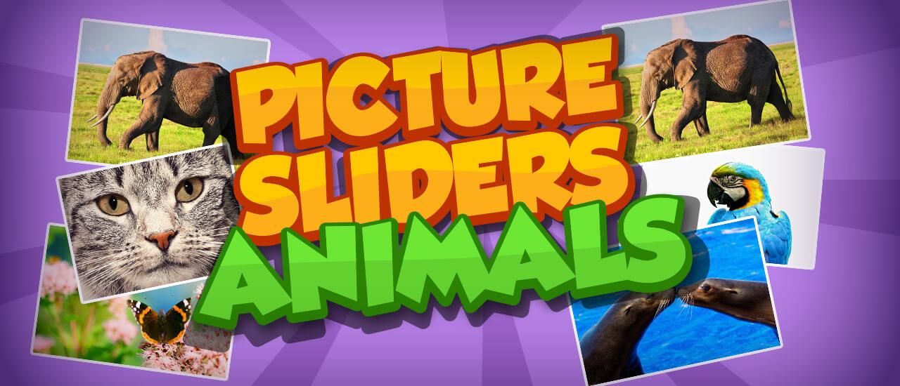 Imagen deslizante de animales