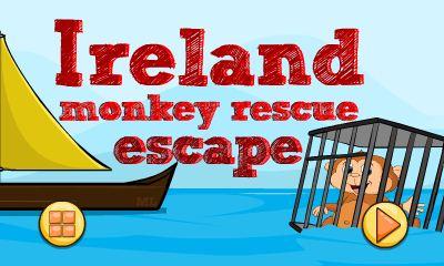 Ireland Monkey Rescue Escape