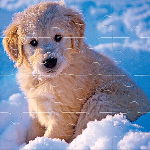 Winter Pets Puzzle