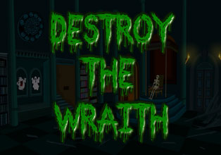 Destroy the Wraith