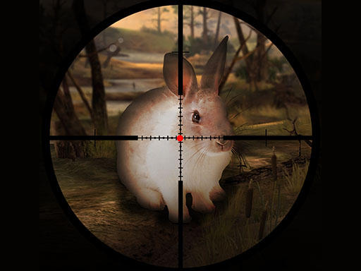 Classical Rabbit Sniper Hunting 2019